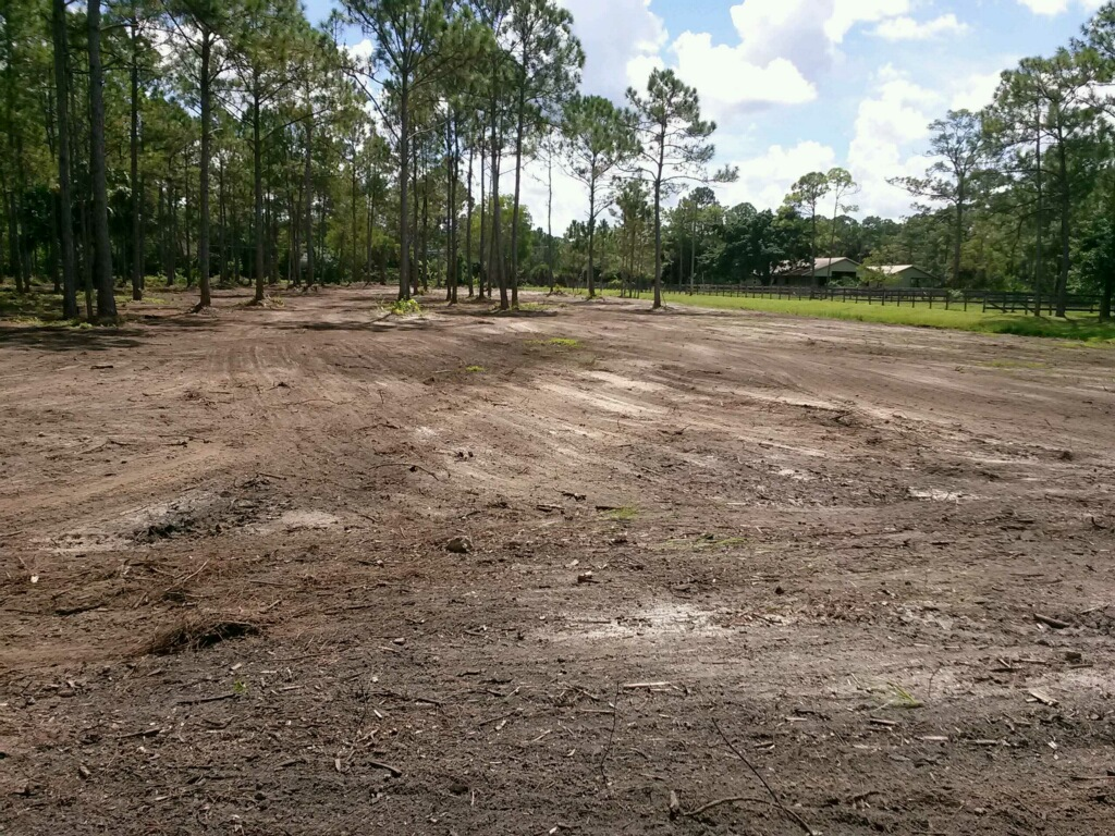 Land Clearing - Site Developement